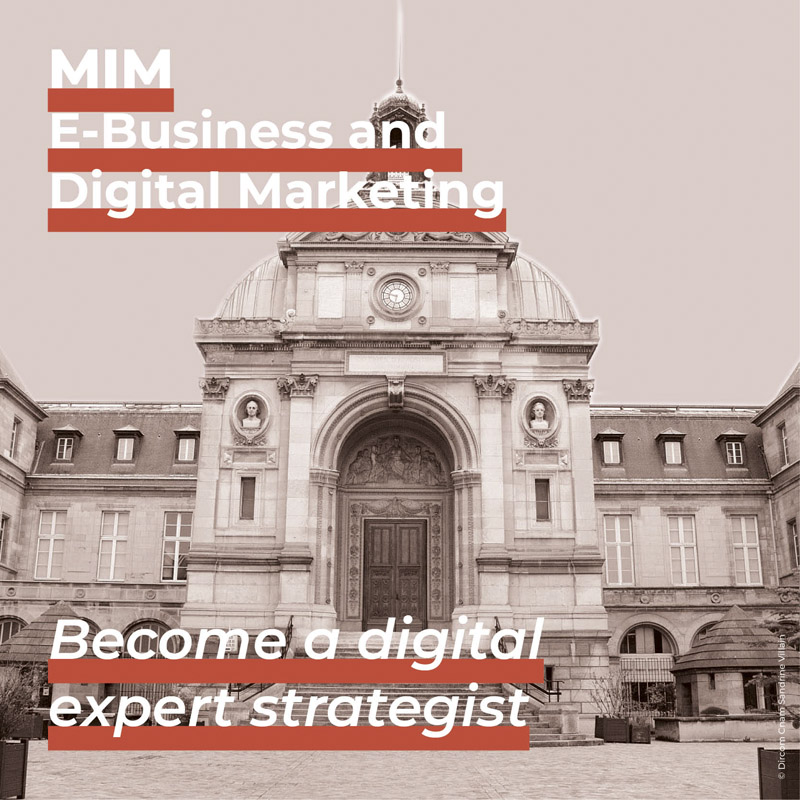 Master in Management E-Business and Digital Marketing